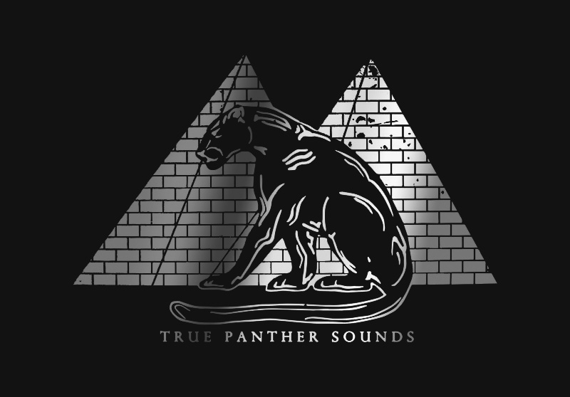 9d50e0d813 Roster | True Panther Sounds